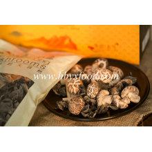 Champignons de Shiitake aux fleurs de thé séchées
