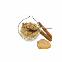 Top Quality 100% Natural Dehydrated Cinnamon Cassia Powder