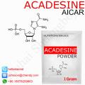 Ventas calientes de esteroides anabólicos Aicar / Acadesine 2627-69-2 tratamiento de enfermedades cardiovasculares