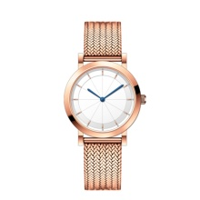 Female All Steel Quartz Movement Watch