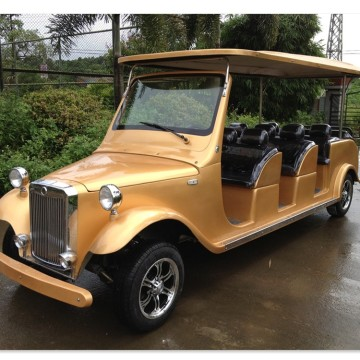 12 tempat duduk gas powered golf cart klasik