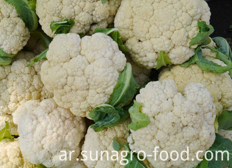 Delicious Frozen Organic Cauliflower