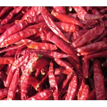 High Quality Dried Red Hot Chilli