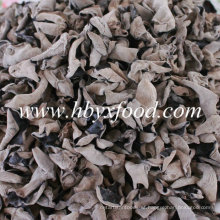 Dried Wood Ear Black Fungus