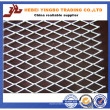 Malha de metal expandida decorativa / malha de porta / malha de arame expandida de ferro