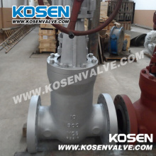 Válvulas de compuerta de sello de presión API 600