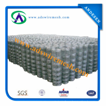 ISO9001: 2008, Sgsgalvanized Field Fence, Cattle Fence, Farm Fence
