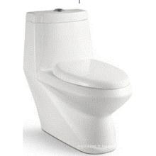 Nice Design Washdown One-Piece Toilet (6508)