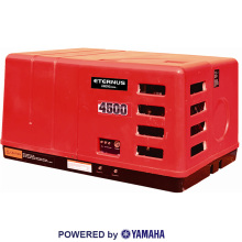Асинхронные генераторы переменного тока 3kw (BH3800EiS)