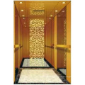 Passagier Aufzug Lift Mirror geätzt Herr & Mrl Aksen Ty-K240