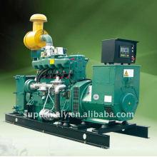 Ensemble de générateur de gaz (8-1000kW) Groupe de générateur de gaz lpg ng