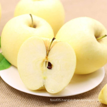 2015 Fresh Golden Apple Exporters in China