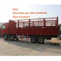 Sinotruck Howo 8x4 Heavy Duty Lorry Cargo Truck