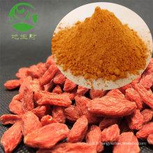 Usine traitant 100% pur goji extrait de baies de goji poudre