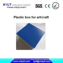 Caja de inyección de plástico para arte / artesanía / regalo