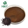 Poudre de thé noir instantané en gros