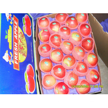 Frische rote Gala Apple Top Qualität