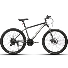 Avasta New Arrival 21 Speed Steel Frame Disc Brake Mountain Bicycle