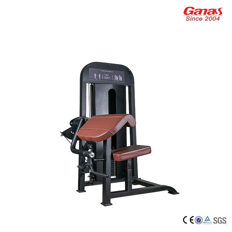 Professional Biceps Curl Machine