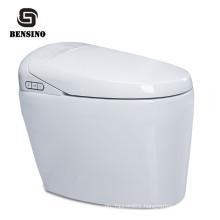 Automatic Cleaning Bidet Flush Smart Toilet,Integrated Intelligent Toilet