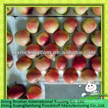 Китай оптовые продажи красного яблока гала