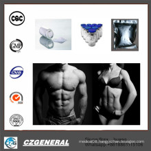 99% Anabolic Steroid for Bodybuilding Supplement Mesta No-Lone CAS: 521-11-9