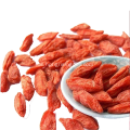 Goji Berry konvensional tanpa Stick Goji Berry