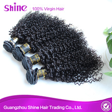 Hot Sale Brazilian Kinky Curly Hair Human