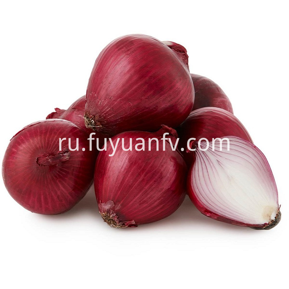 Red Onion 10