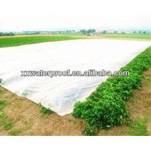 Tecido anti-UV PP não tecido para coberturas