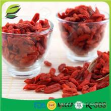 ithalat organik goji berry price