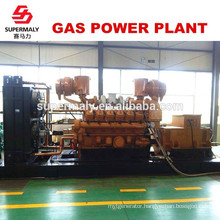 Energy saving Reliable quality 500KW natural gas generator by advanced technology