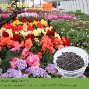 Agro basal Organic fertilizer granular