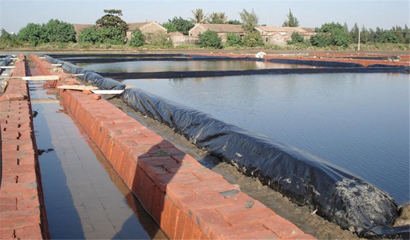 salt pond liner