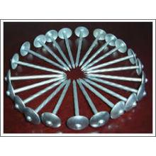 Común de acero galvanizado paraguas redondos clavo