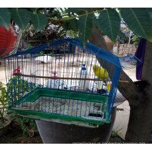 China fábrica alta qualidade metálica azul linda gaiola de pássaro
