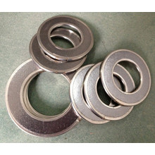 Graphite Gaskets/Expanded Graphite Gaskets/Gasket Insert CS 304 316