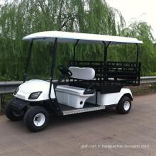 jinghang militaire blindé 2seats gaz voitures de golf de haute qualité