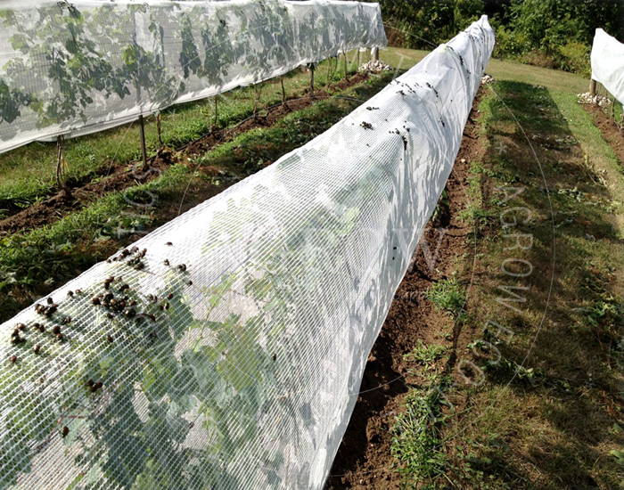 Fruit Zone Netting Systems