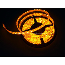 5m 150 LED Non étanche SMD 5050 30 LED Strip Light 12V DC CE