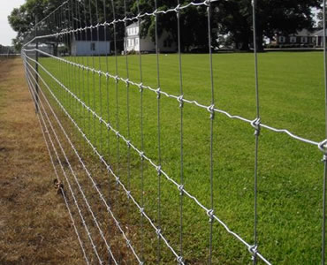 Fixed Knot Steel Fence