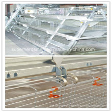 High Quality Cage System for Poutry Farm