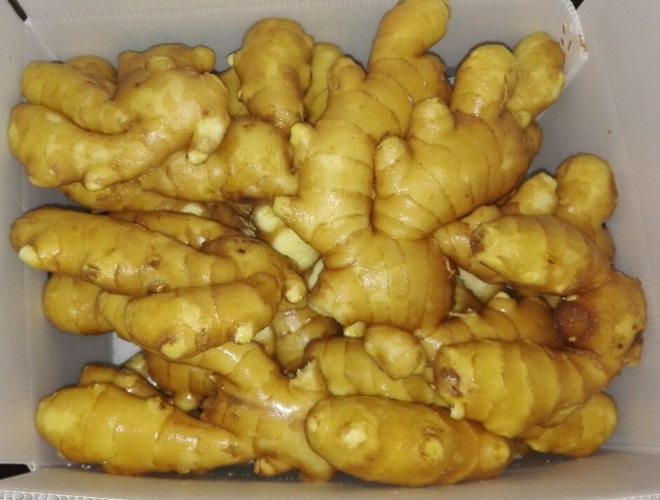 fresh ginger 3 plastic box