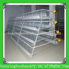 china popular and good quality chicken layer poultry designs