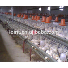 layer poultry farm chicken raising equipment