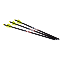 EXCALIBUR  -  QUILL 16.5 ILLUMINATED CARBON ARROW 3PK