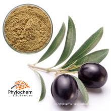 bulk olea europaea fruit oil powder capsules oleuropein olive leaf extract