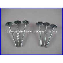 3/8′′ to 7′′ Smooth / Twist Shank Umbrella Head Roofing Nail