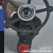 Y Type Forged Globe Valve (J61)