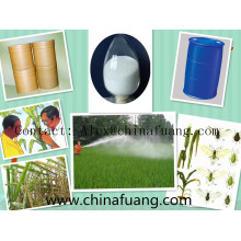Сельскохозяйственные химические вещества Инсектицид Пестицид Temephos 1% Sg Личинки, убивающие ларвицид
